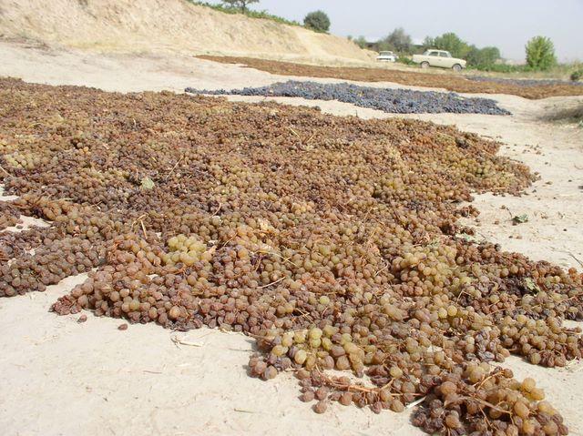 Как из винограда сделать изюм в домашних условиях